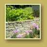 Phlox, daylilies and evergreen shrubs beside a stone wall